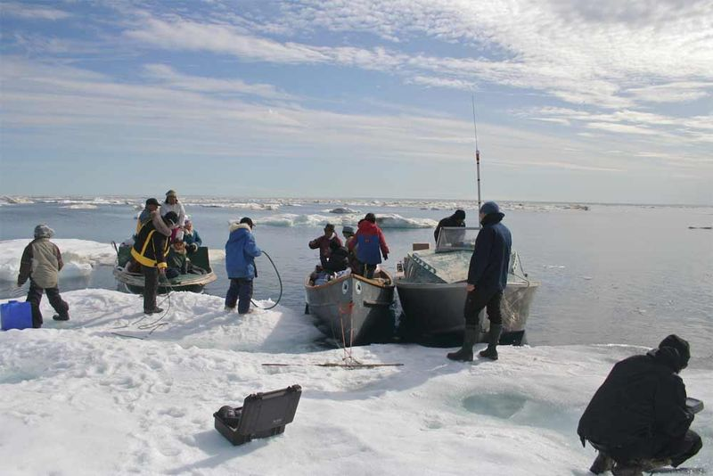 Arctic Perspective Initiative on the Land
