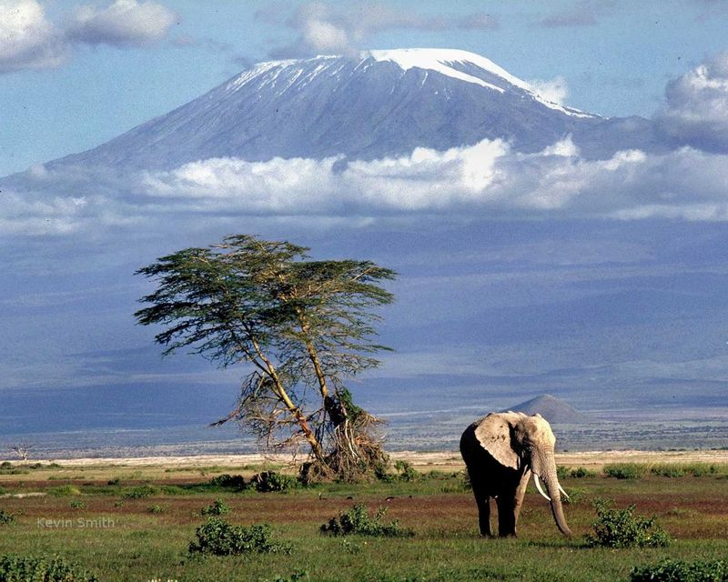 Source tanzaniatraveldestination.blogspot.com