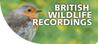 British-wildlife-recordings