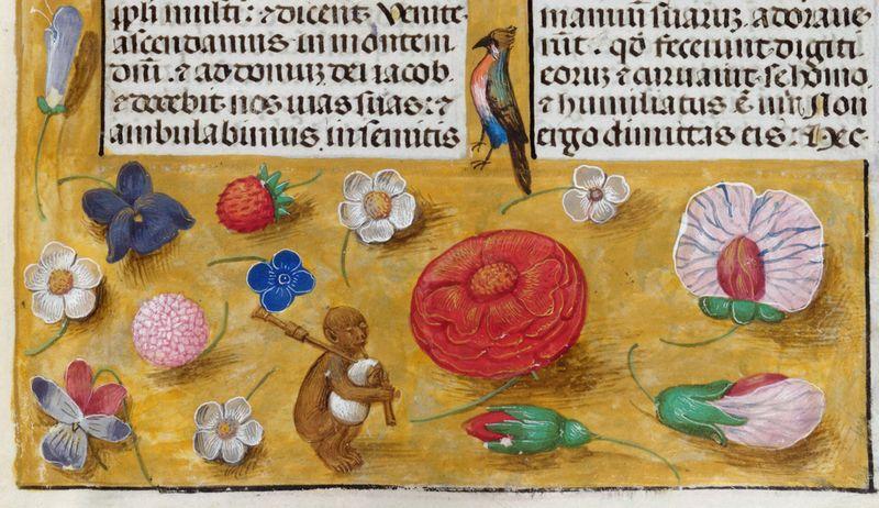 C11404-06a Add 18851 f. 13 detail