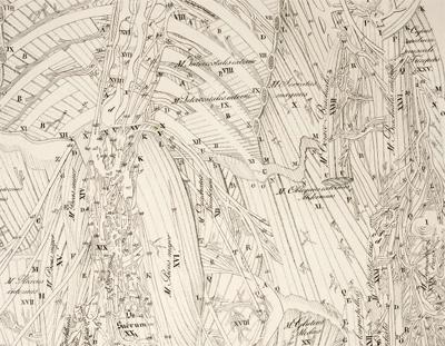 Anatomical drawings 4