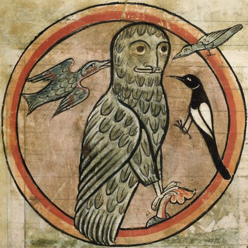 Bad News Birds Medieval Manuscripts Blog