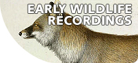 Early-wildlife-recordings