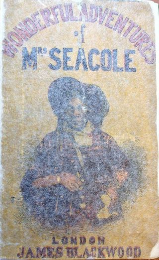Adventures of Mrs Seacole