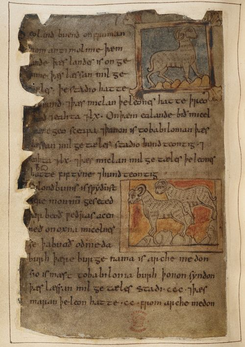 essay about pollution solutions videos