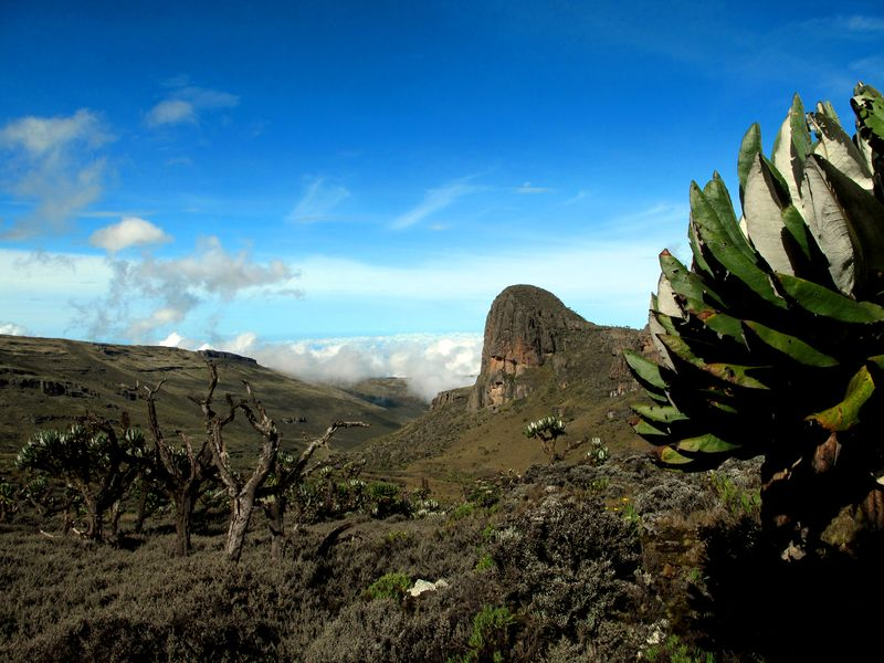 Mount_Elgon-2
