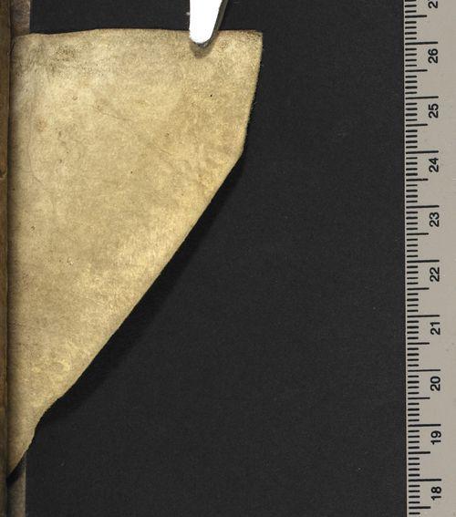 Guess_the_manuscript_iv_1