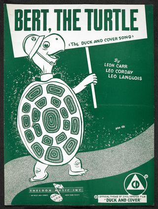 Bert-turtle