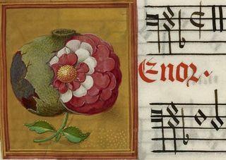 Poemgranate