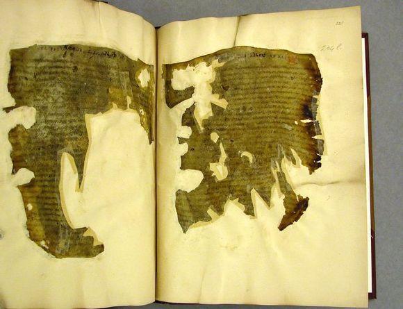 Cotton MS Vitellius B. IV