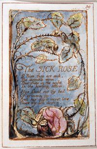 William Blake, Sick Rose
