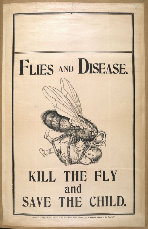 Kill-the-fly