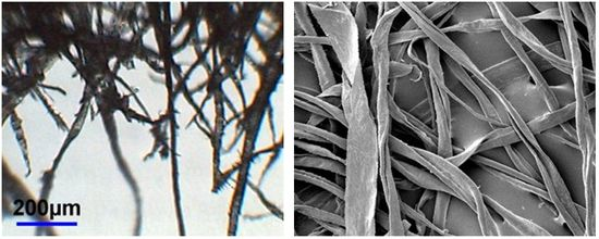 Wood and rag fibre comparison