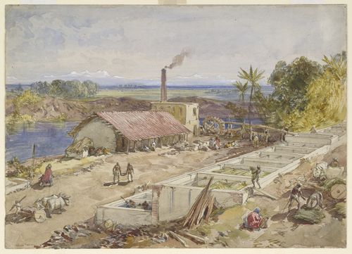 Indigo factory