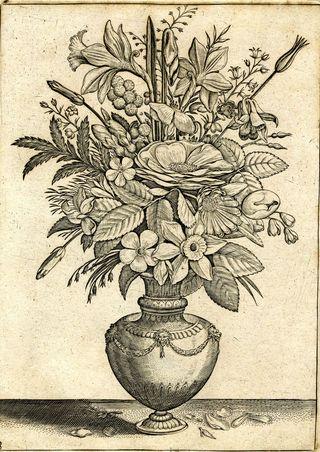 555.d.23.(3.), pl. 3 Adriaen Collaert Florilegium pl. 3