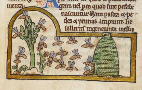 Royal MS 12 C XIX f. 45r bees F60101-62a