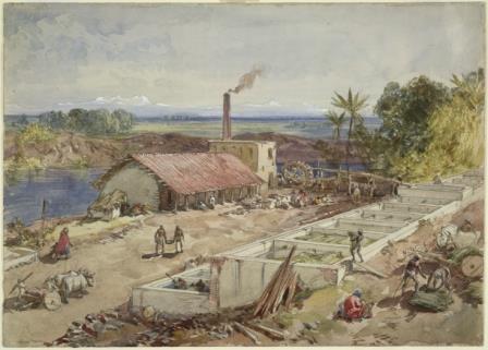 Bengal indigo factory 065992