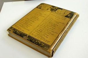 The Yellow Book before conservation