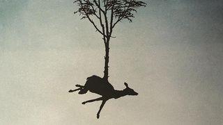 Animal-tales2