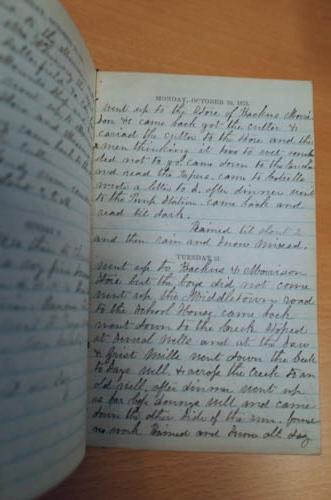 Diary text