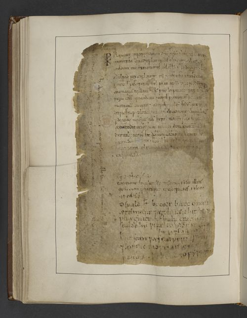 Cotton_ms_tiberius_a_xiii_f118v