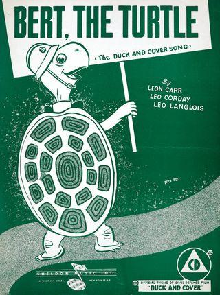 Bert-the-turtle
