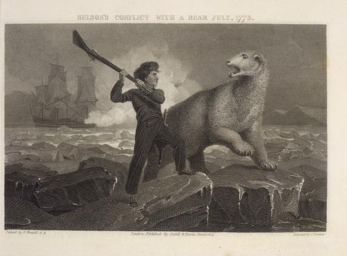 Nelson in conflict with a bear