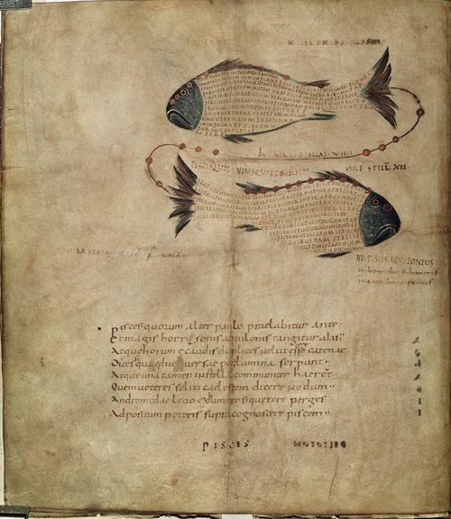 Fish 9th century E021999